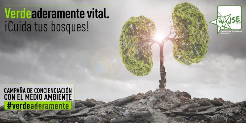"""JSE: """"La Ley de Montes del PP es un atentado contra nuestro patrimonio forestal"""""""