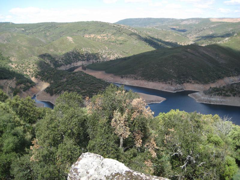 """JSE: """"La Ley de Parques Nacionales del PP supone la privatización del mayor patrimonio natural de nuestro país"""""""