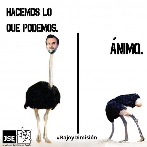 """JSE: """"Que Rajoy se niegue a dar explicaciones en el Congreso es de un absolutismo inadmisible"""""""
